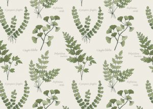 A121.1 - Cream ferns & leaves