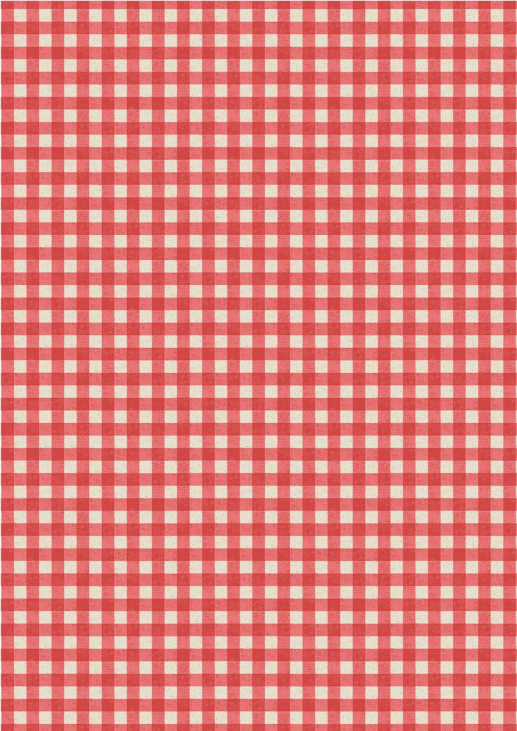 A213.3 - Red rustic gingham