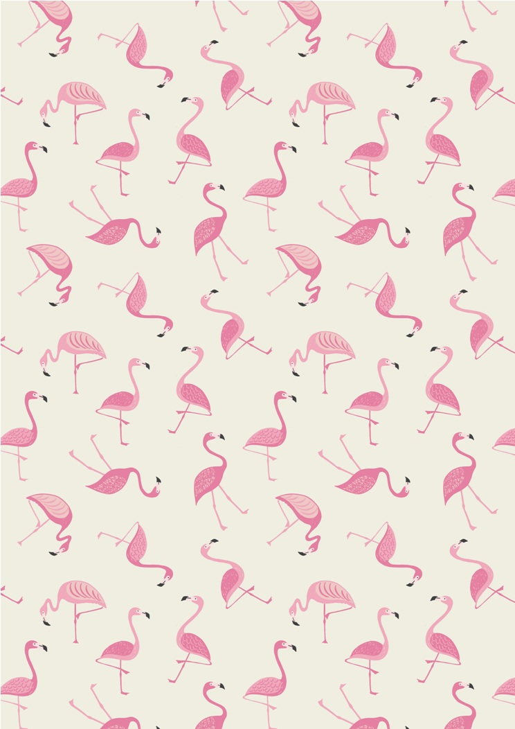 A133.1 - Flamingo on white