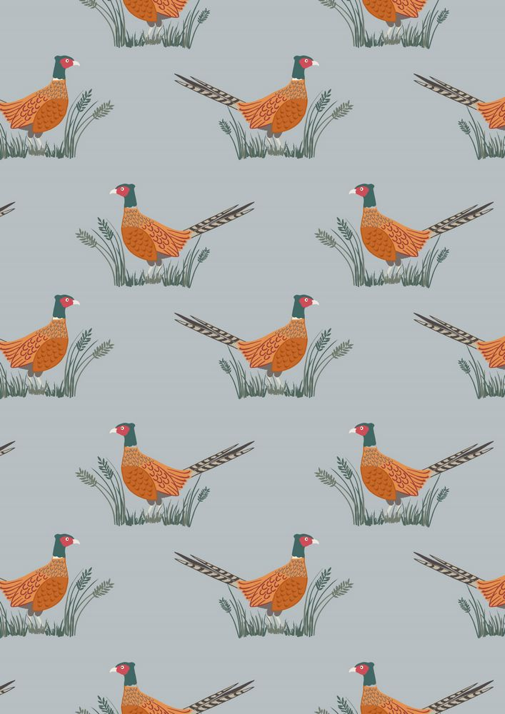 A91.1 - Friendly pheasant on country blue