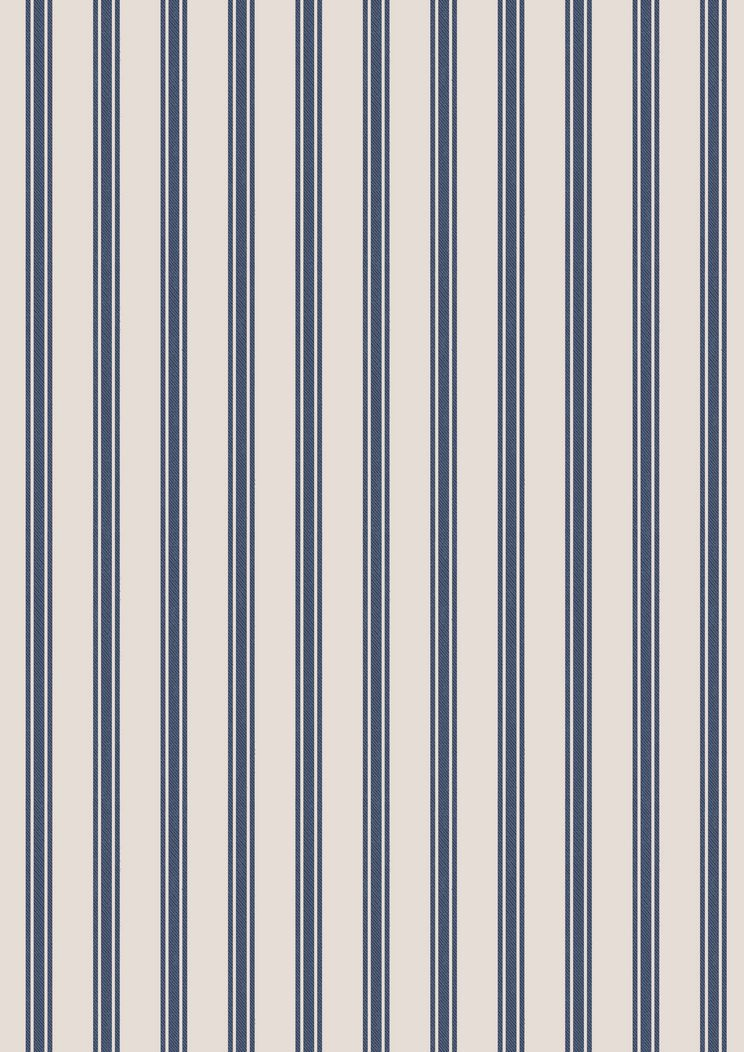 C18.1 - Navy stripe